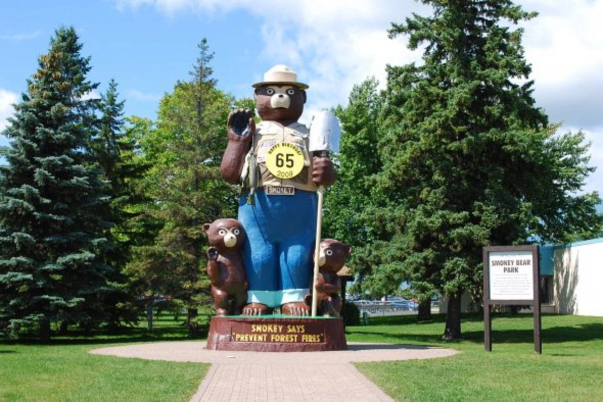 Smokey became the symbol of forest fire protection in 1945, making him 65 years old. Should he retire?