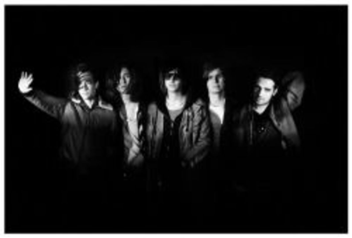 The Strokes- photo from Amazon