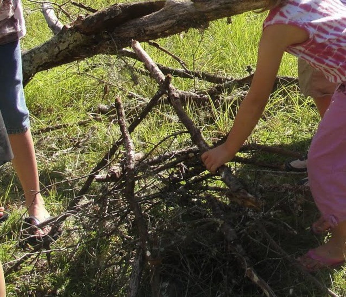 Collecting Timber and Kindling