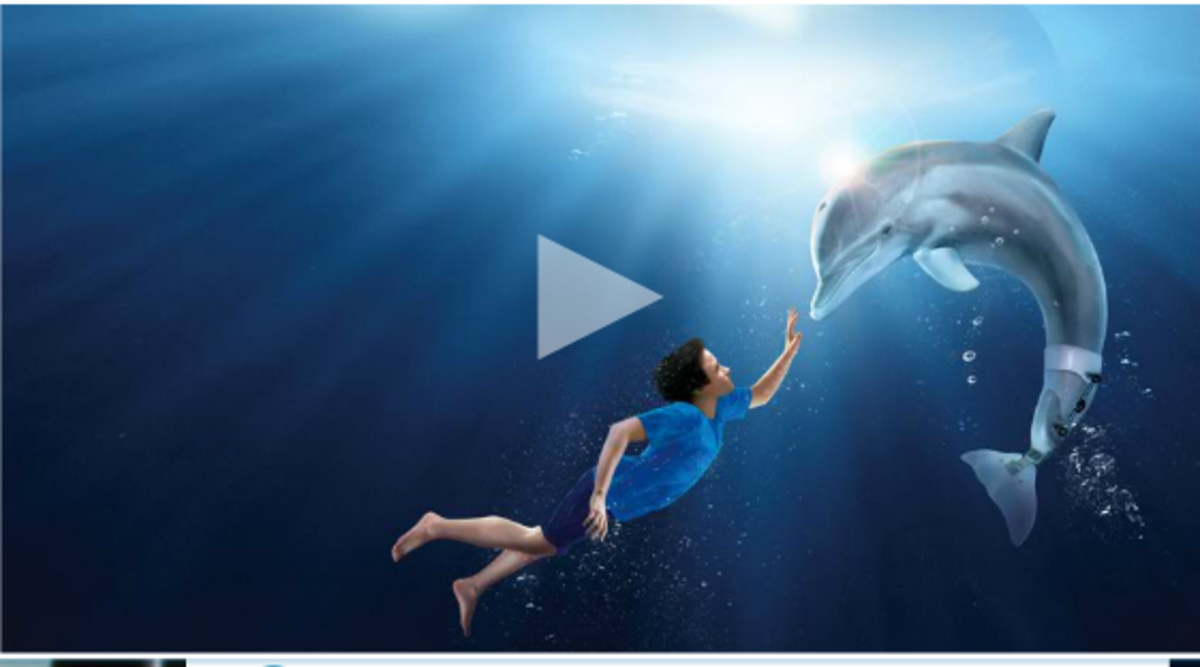 Dolphin Tale Featurette