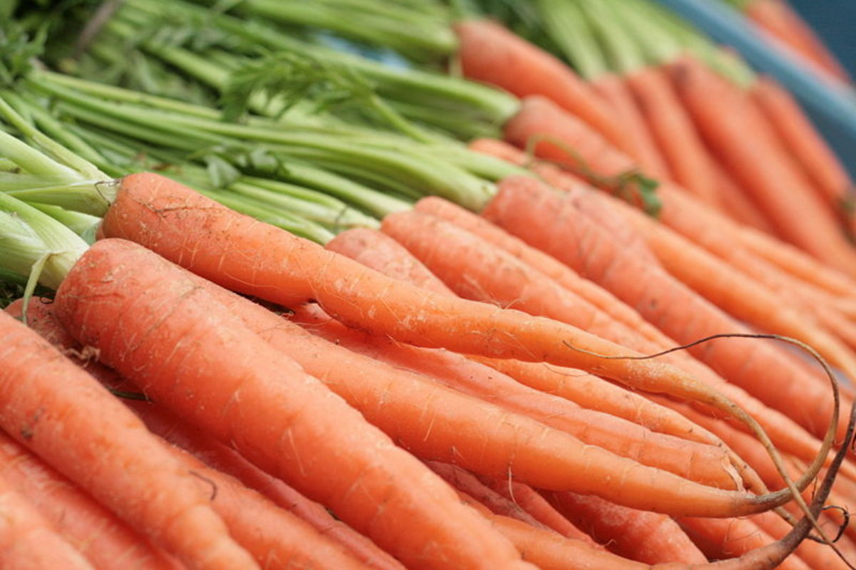 Benefits of Carrots,Carrot Juice And Gajar Ka Murabba In Pregnancy And Health