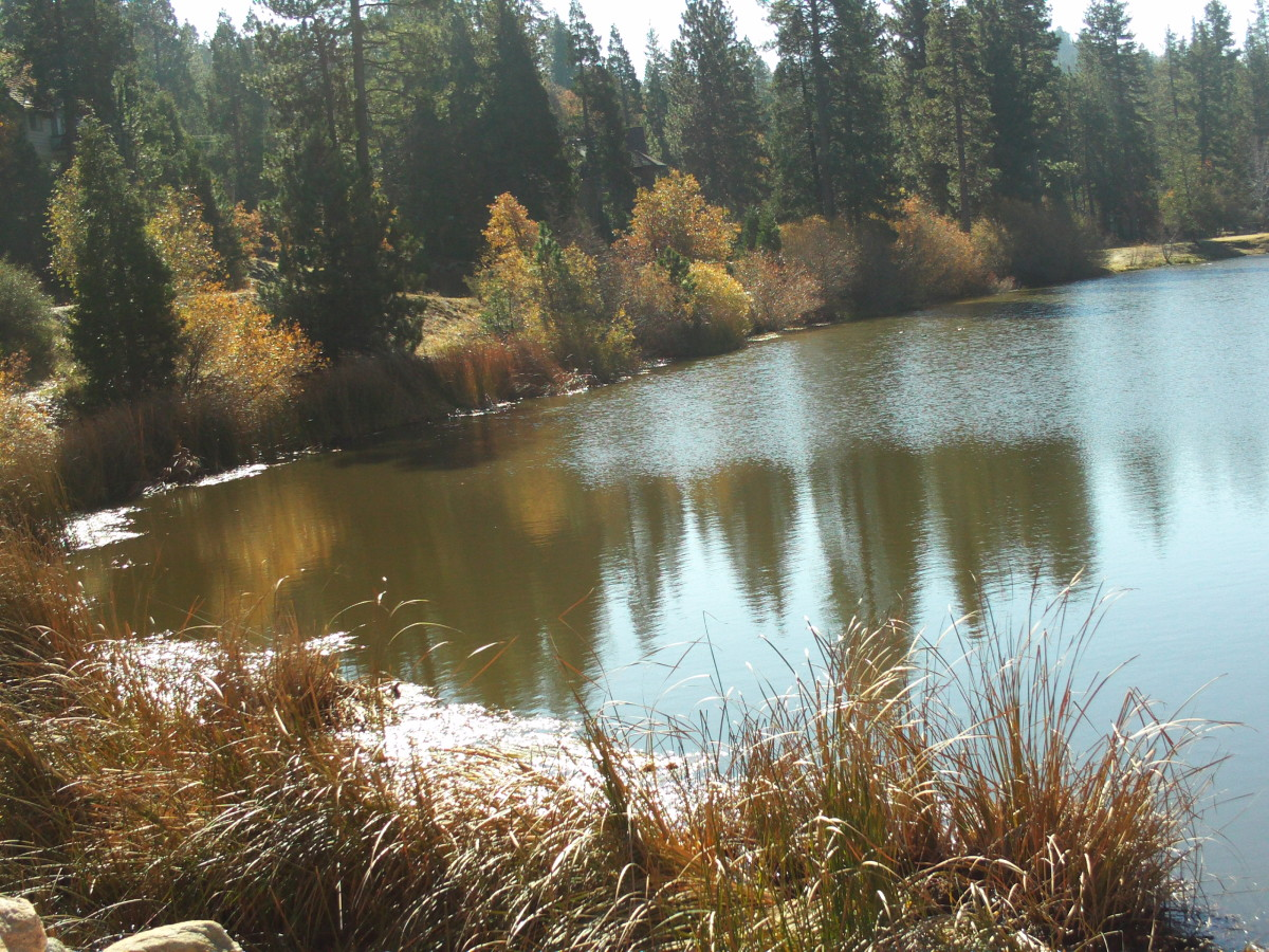 I walked over two miles to take pictures of Grass Valley Lake on a late November morning.