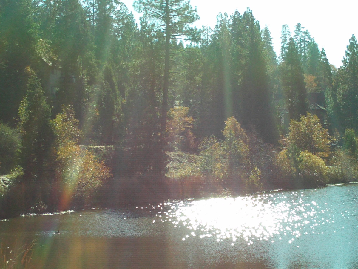 People are not allowed to swim in Grass Valley Lake, but you can stroll by and admire its beauty.