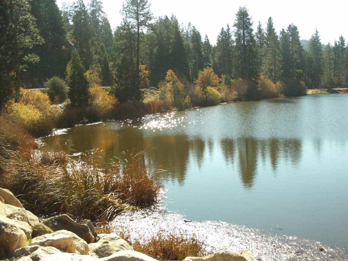 The trees are reflected in the magnificent mirror of Grass Valley Lake.