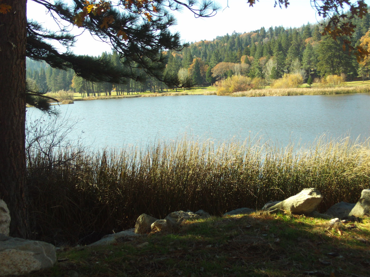 The view of Grass Valley Lake up in the San Bernardino Mountains.