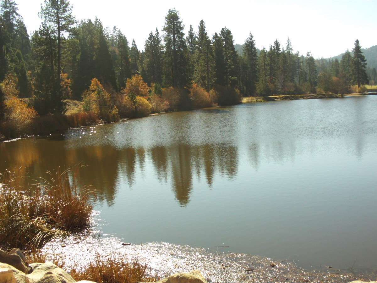 Looking out towards the south side of Grass Valley Lake.