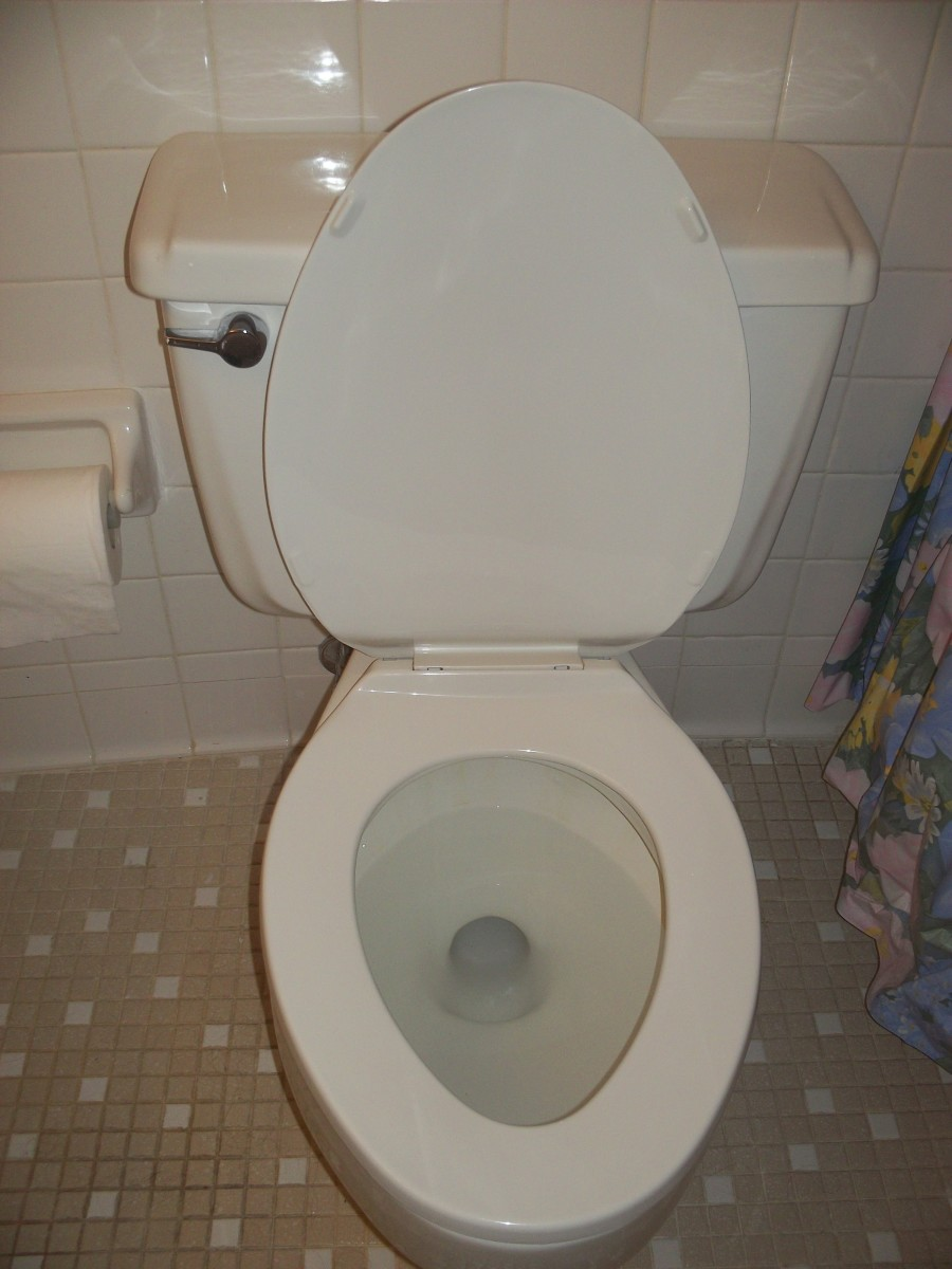 How to Flush the Toilet