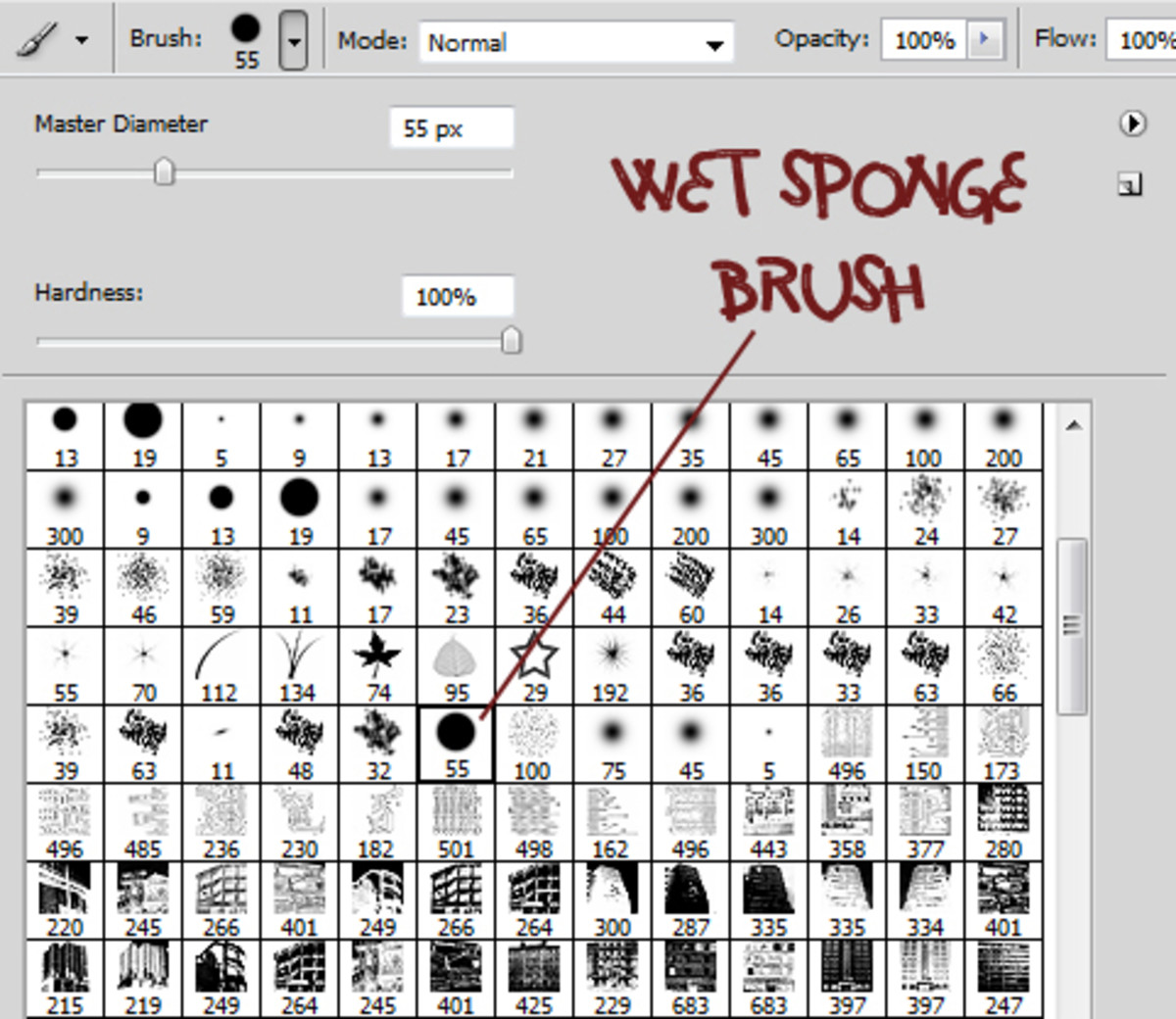 The Wet Sponge Brush is the one with a number 55 below the circle.