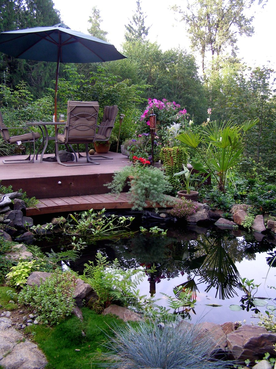 Backyard landscaping ideas for a gorgeous retreat for Koi fish pond for beginners