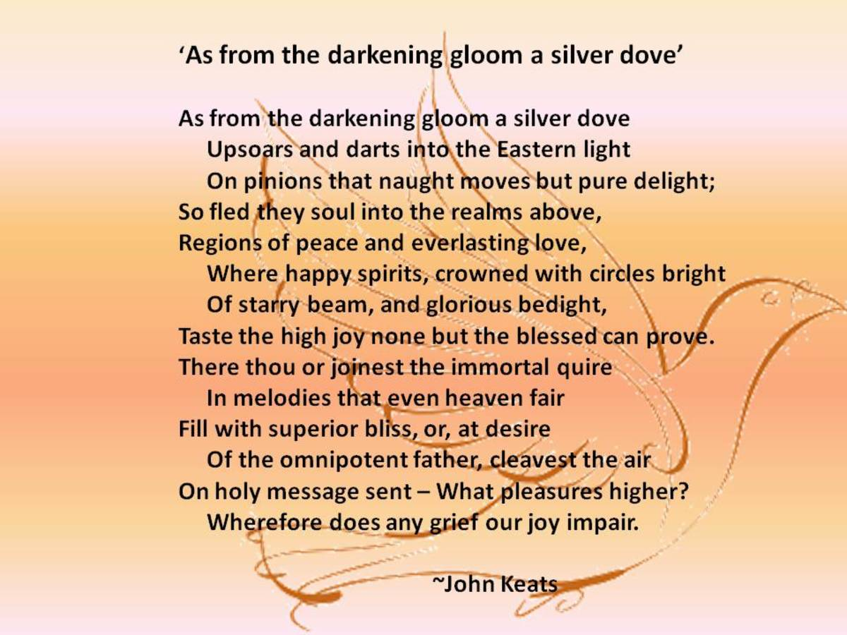 What Is A Thesis Statement In A Essay A Discussion Of John Keats Sonnet Entitled As From The Darkening Gloom A  Silver Dove  Hubpages College Vs High School Essay Compare And Contrast also Search Essays In English A Discussion Of John Keats Sonnet Entitled As From The Darkening  Do My Assighment