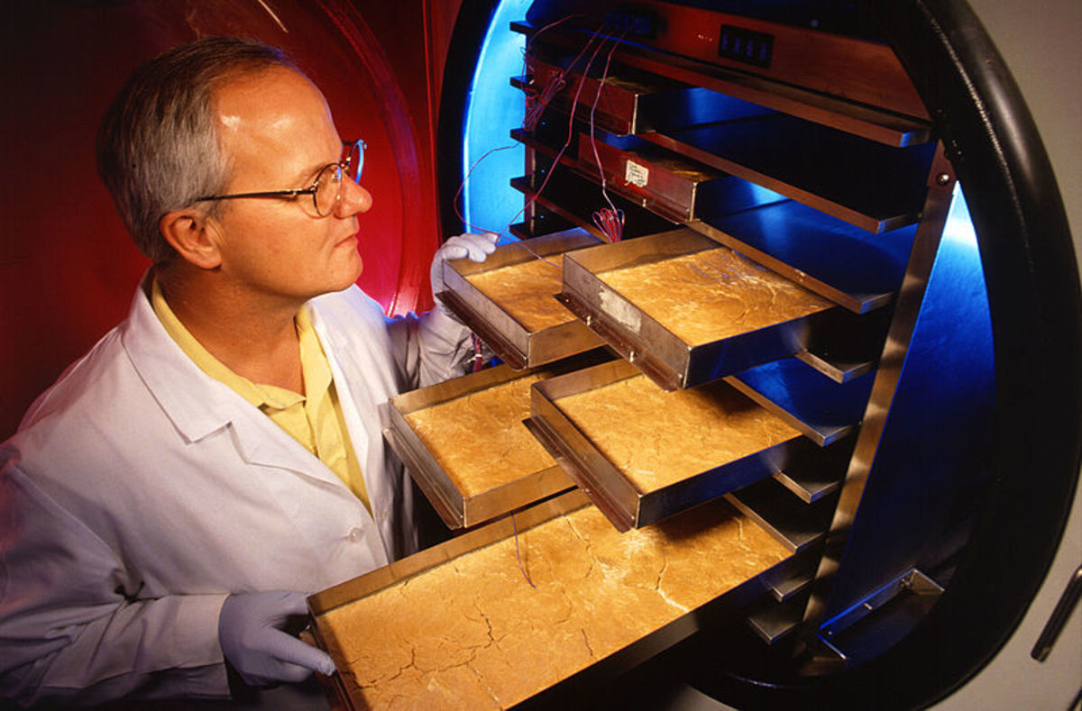 A scientist observes product frozen in freeze-dryer trays.