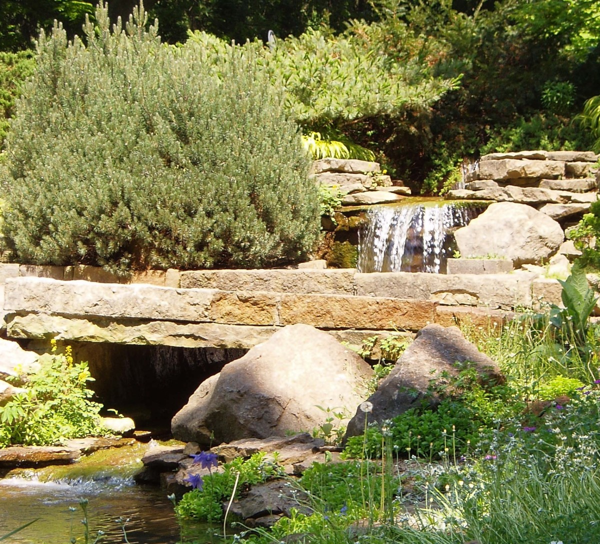 A view of the waterfall in the rock garden at Inniswoods Metro Gardens.