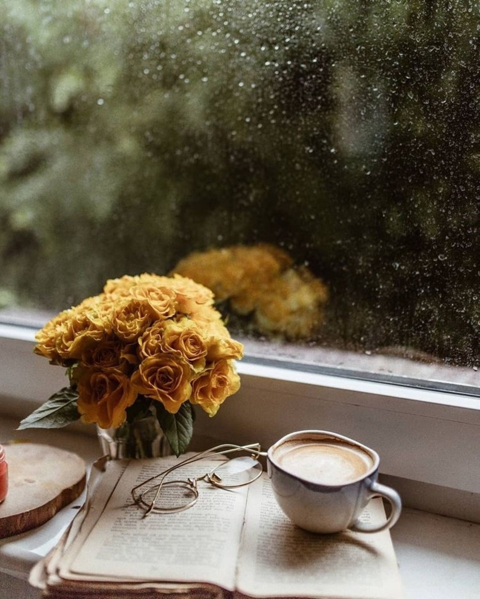 10-rainy-day-activies-for-adults