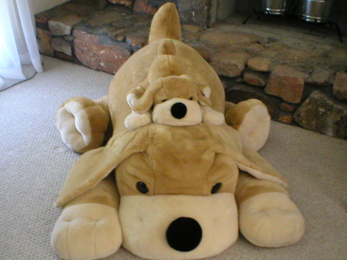 My stuffed dogs, Patrick and Patrick, Jr. cozy by the fireplace.