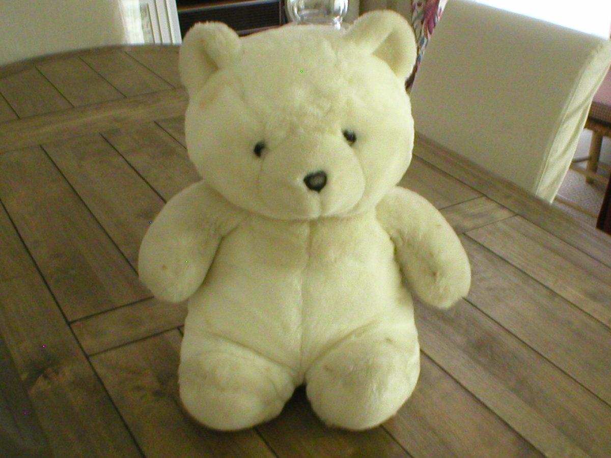 Teddy is too cute!