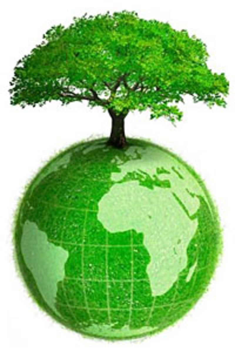 Environment has to be important for everyone
