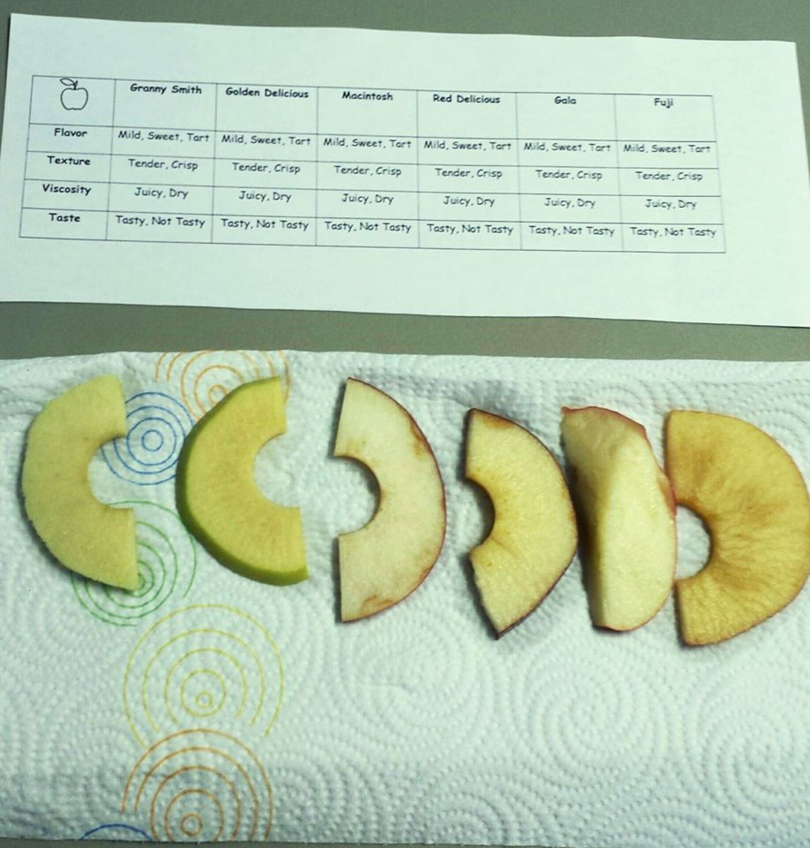 This photo of the apple tasting activity was taken by Victoria, one of the mothers in our co-op class.