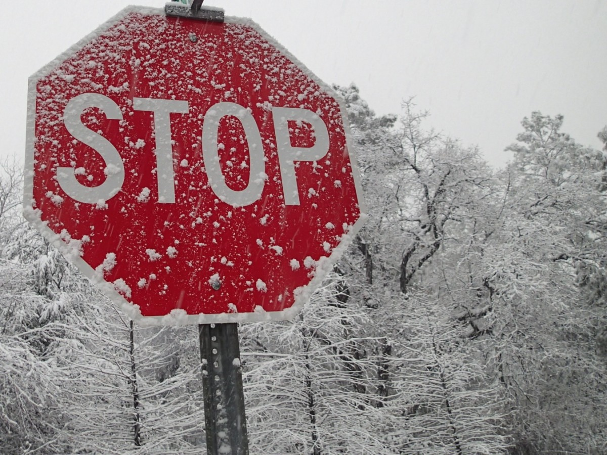 Don't Stop the Snow