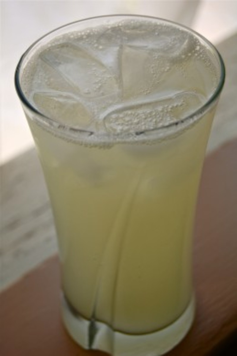 The Ginger Beer Plant - Home made recipe from 1930s, really mouthwatering.