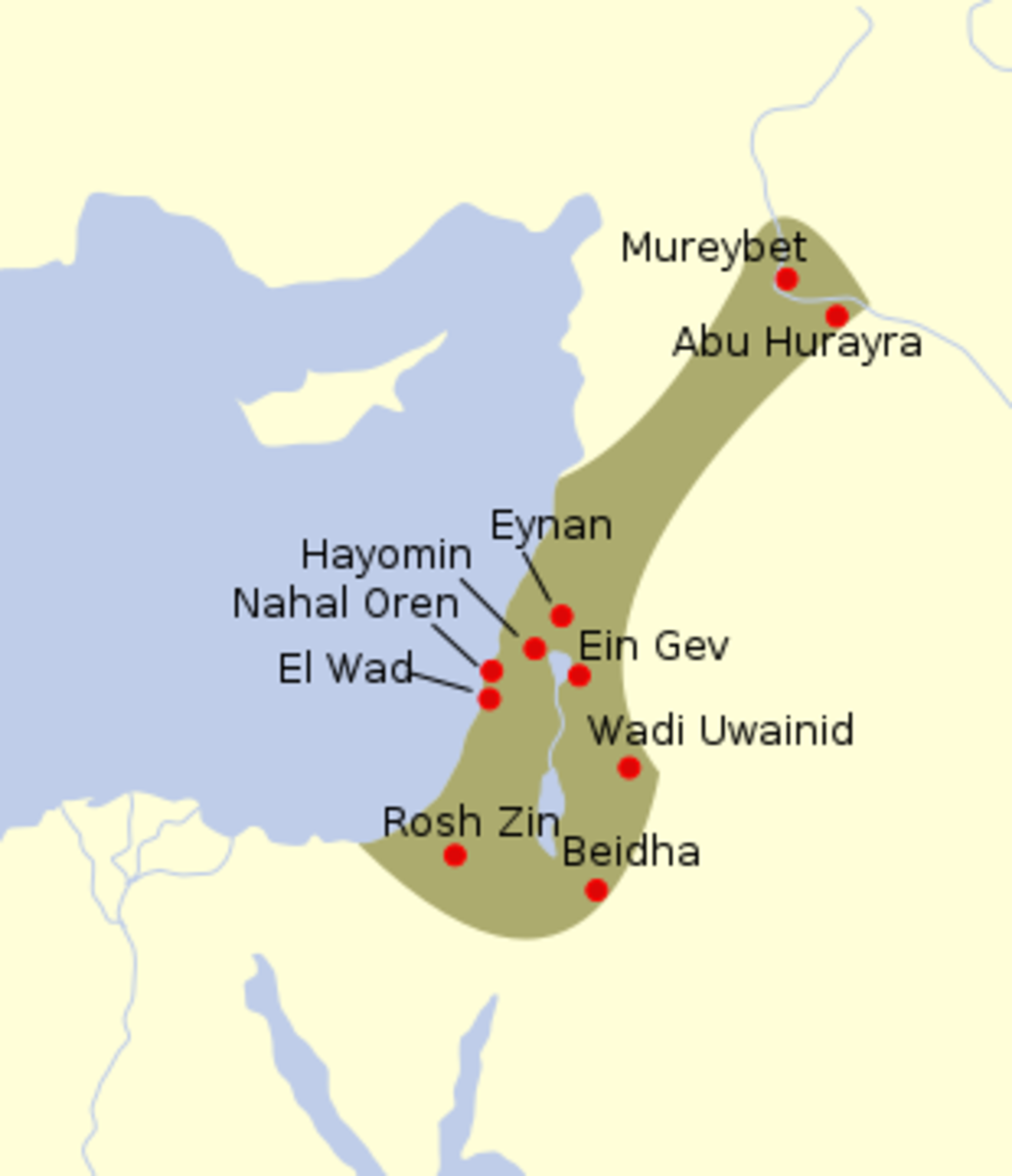 The highlighted part of this map of the Middle East shows sites where Natufian artefacts have been found, dating to between 13,000-9000 years ago.