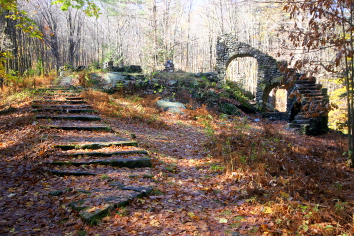 A Hike Through Madame Sherri Forest And A Look At Her