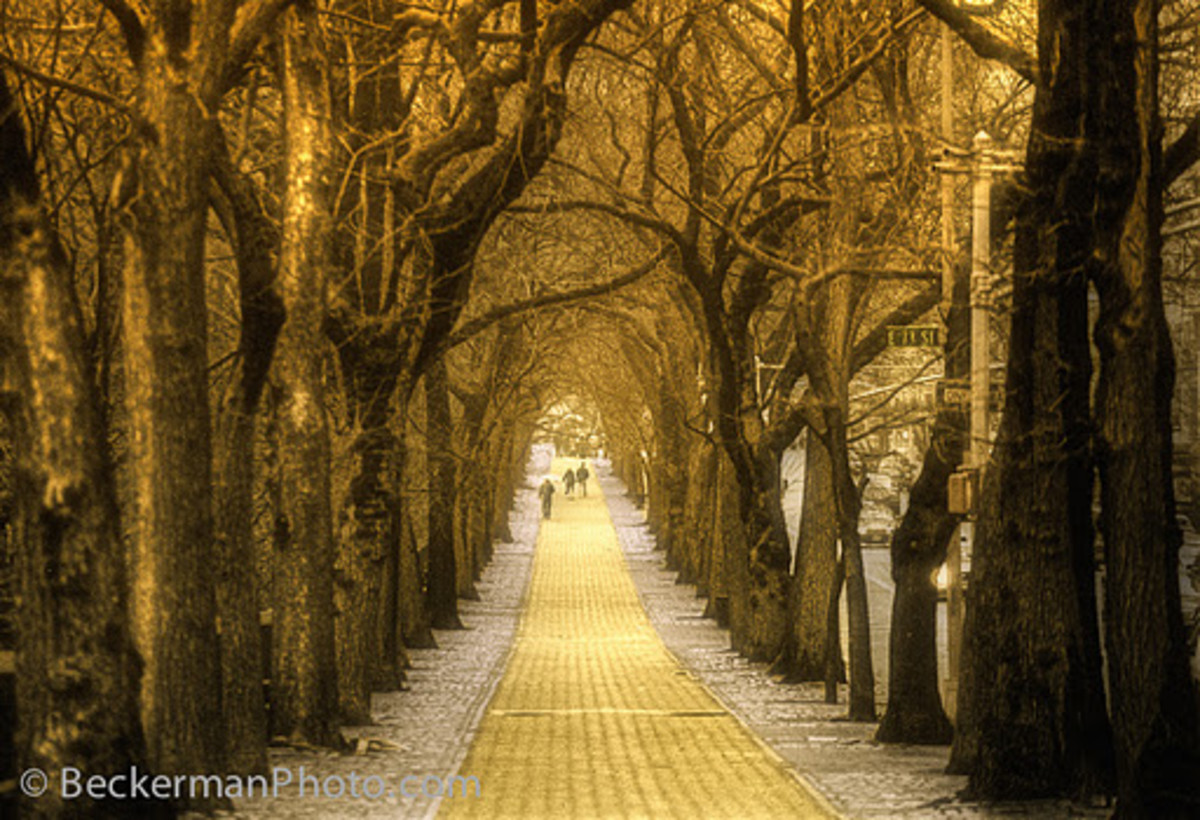 STREETS OF GOLD (BECKERMAN PHOTOGRAPHY)