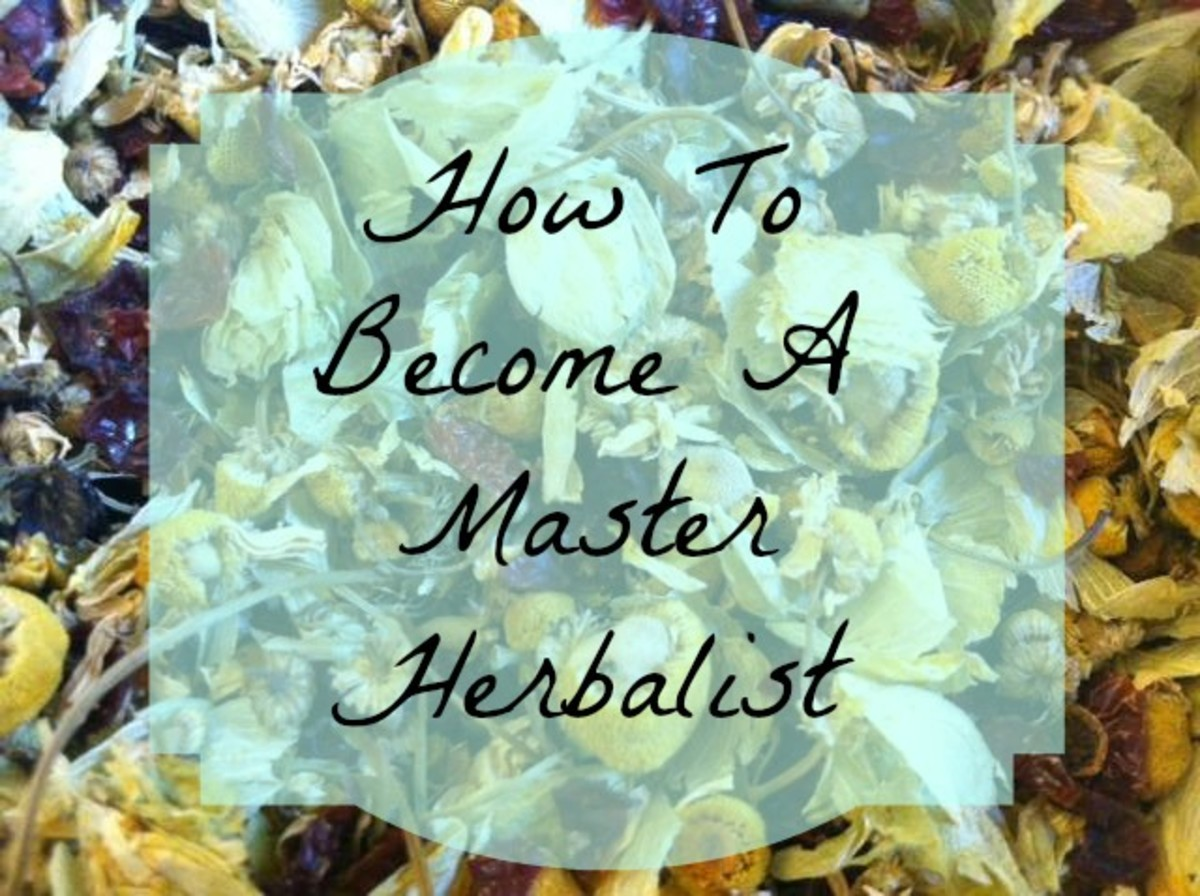 How to Become a Master Herbalist