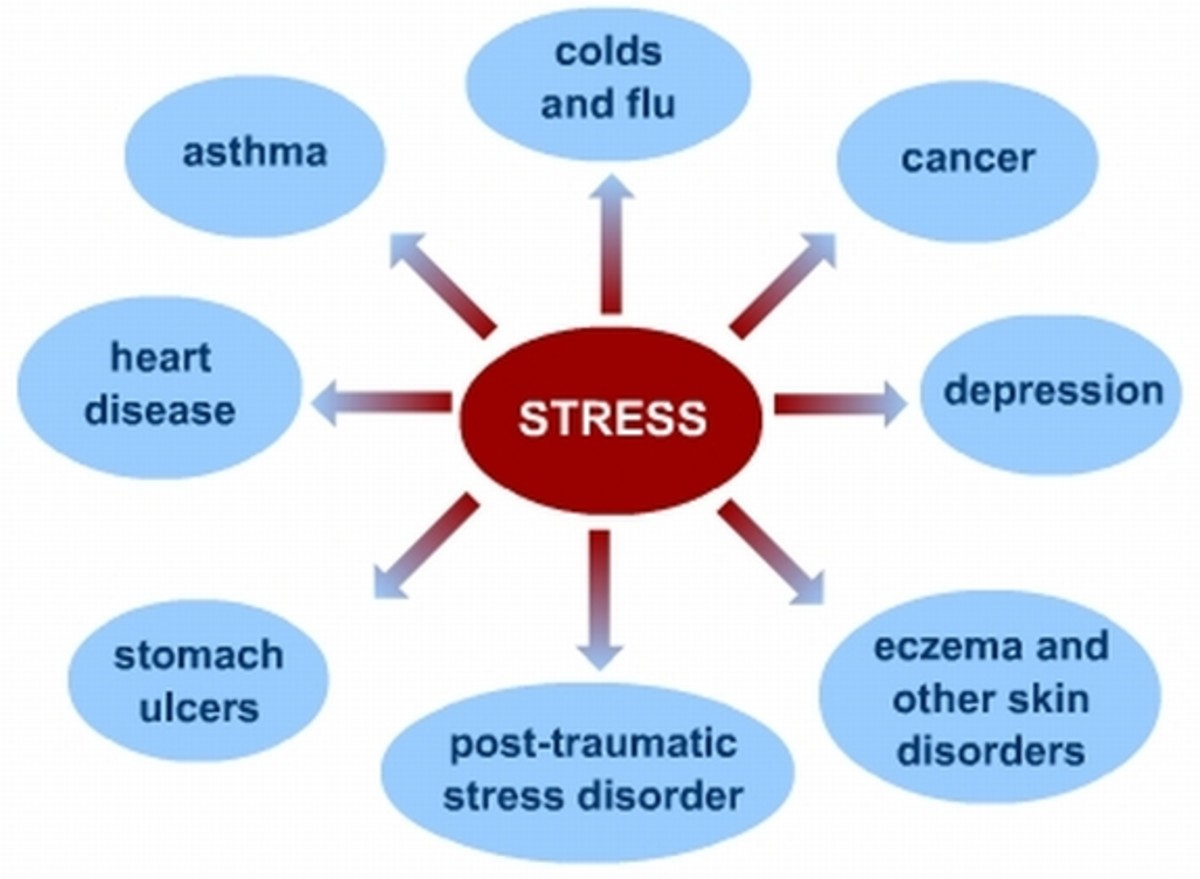 Stress Can Lead To Many Health Problems - Even Death