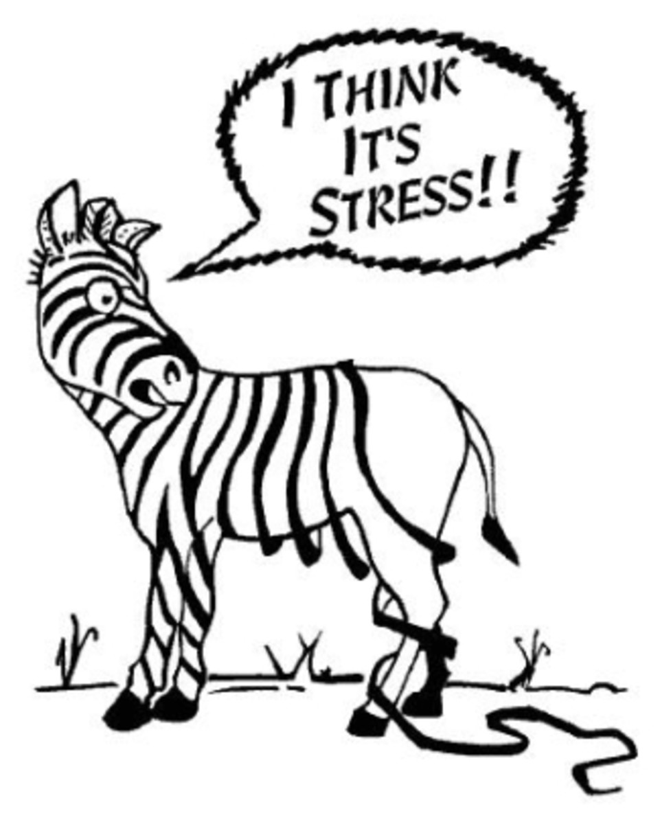 the-six-leading-causes-of-death-can-be-attributed-to-stress