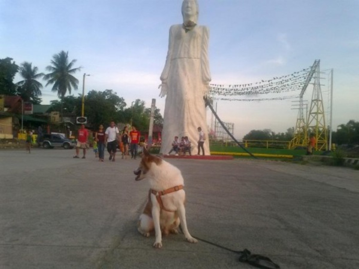 Places in Marikina where you can dine in, walk and bond with your dogs;,