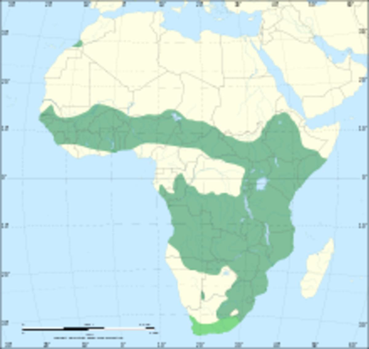 Range of the Serval