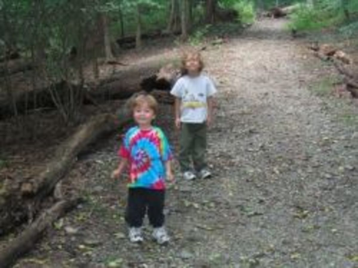 Hiking trails near the campground