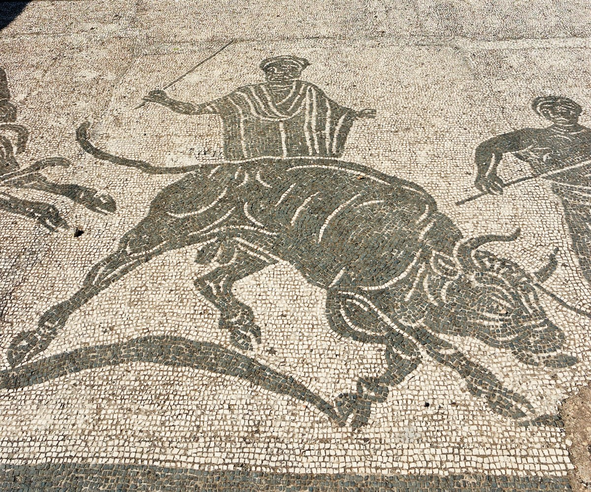 Sacred bull to sacrifice in mosaic, Latium , Italy