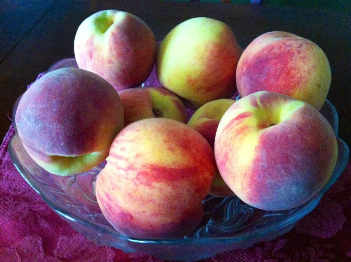 Bowl of fresh peaches on my table