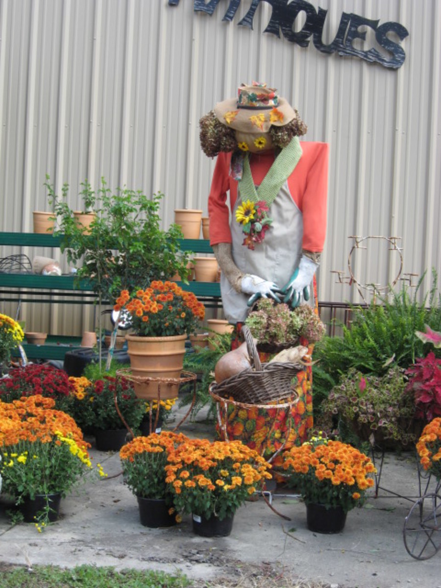 southeast garden center