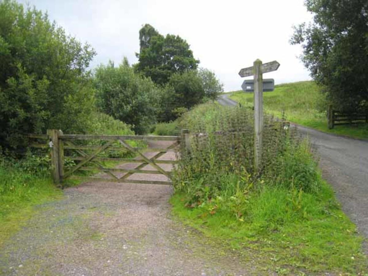 The South Tyne Trail near Lambley, near where you regain the viaduct