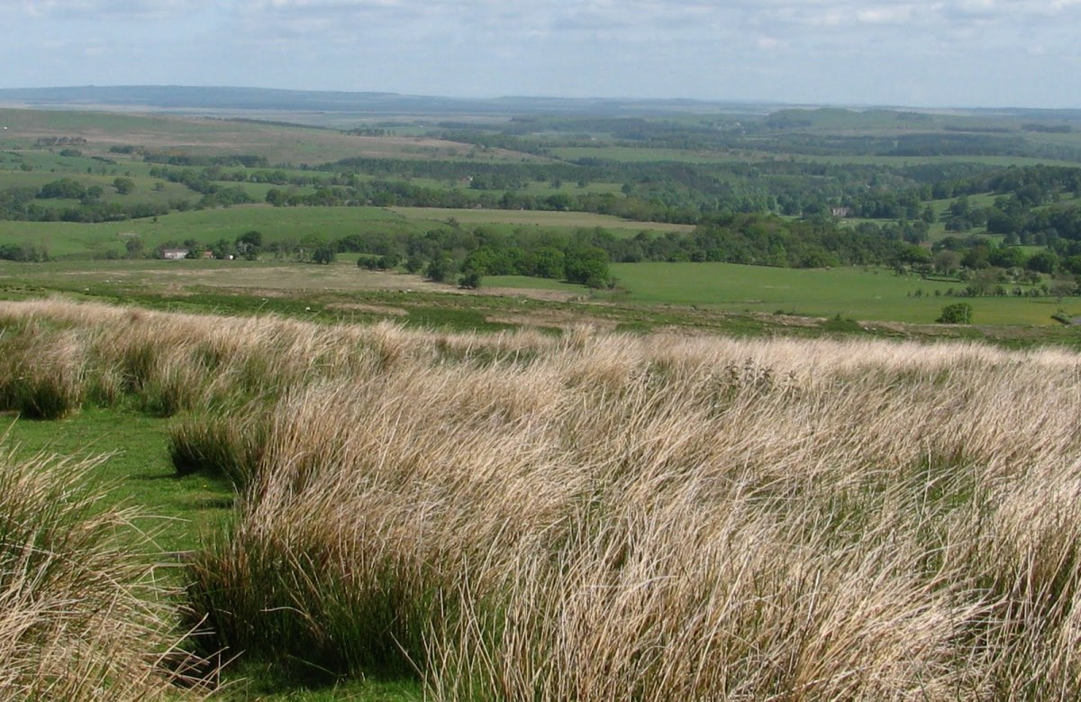 Lambley Common - the view across rural Northumberland