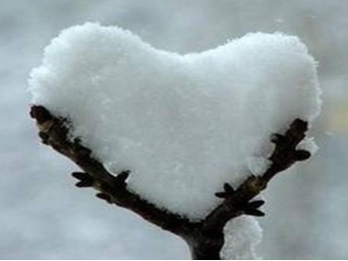 Season heart