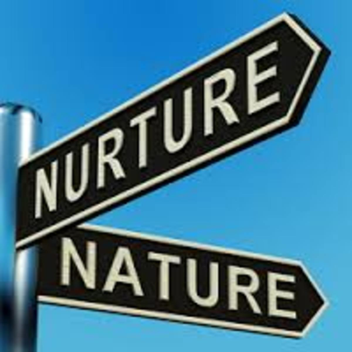Nature Vs Nurture Society And Culture