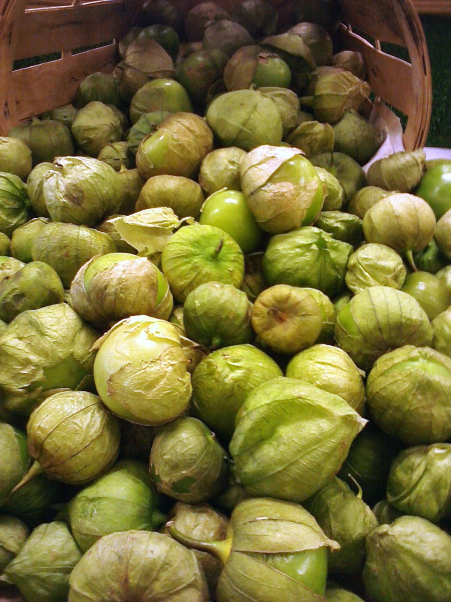 Similarities and Differences between Tomatillos and Green Tomatoes