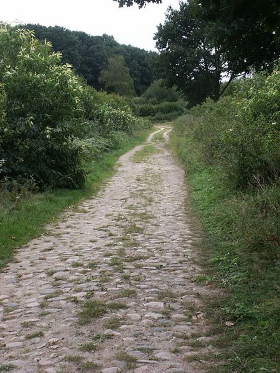 Old salt road in Germany used to transport salt and other supplies in ancient times.