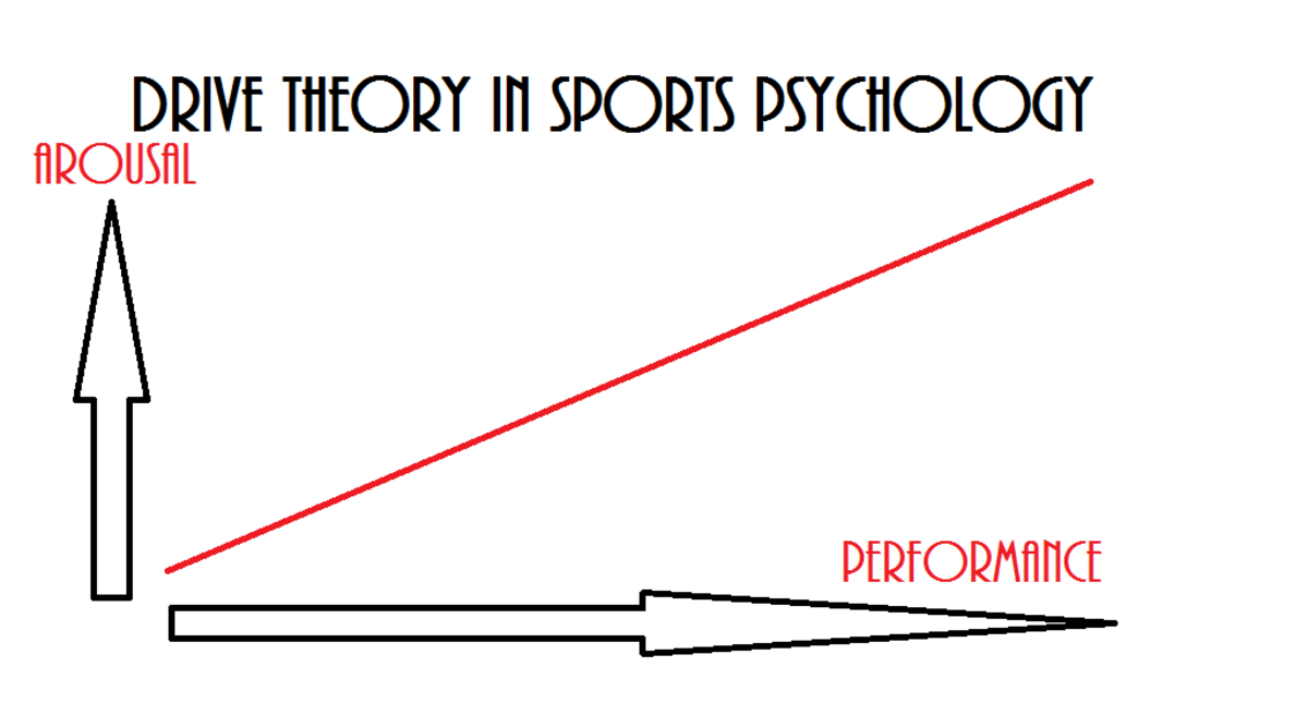 Driver Theory In Sports Psychollogy