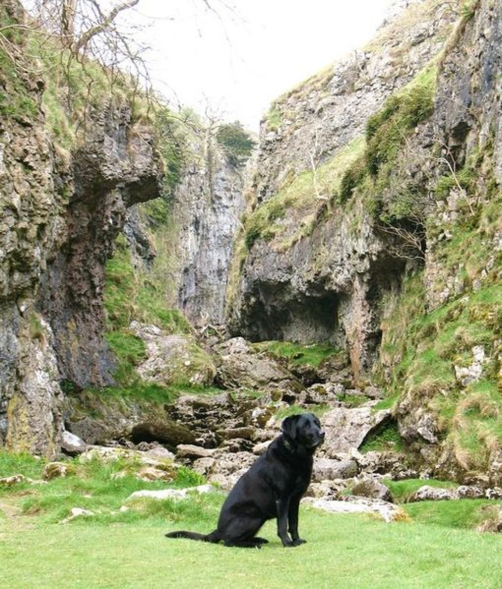 Trollers Gill with Black Dog