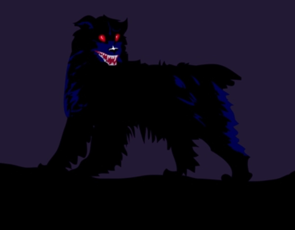 Ghost Black Dog