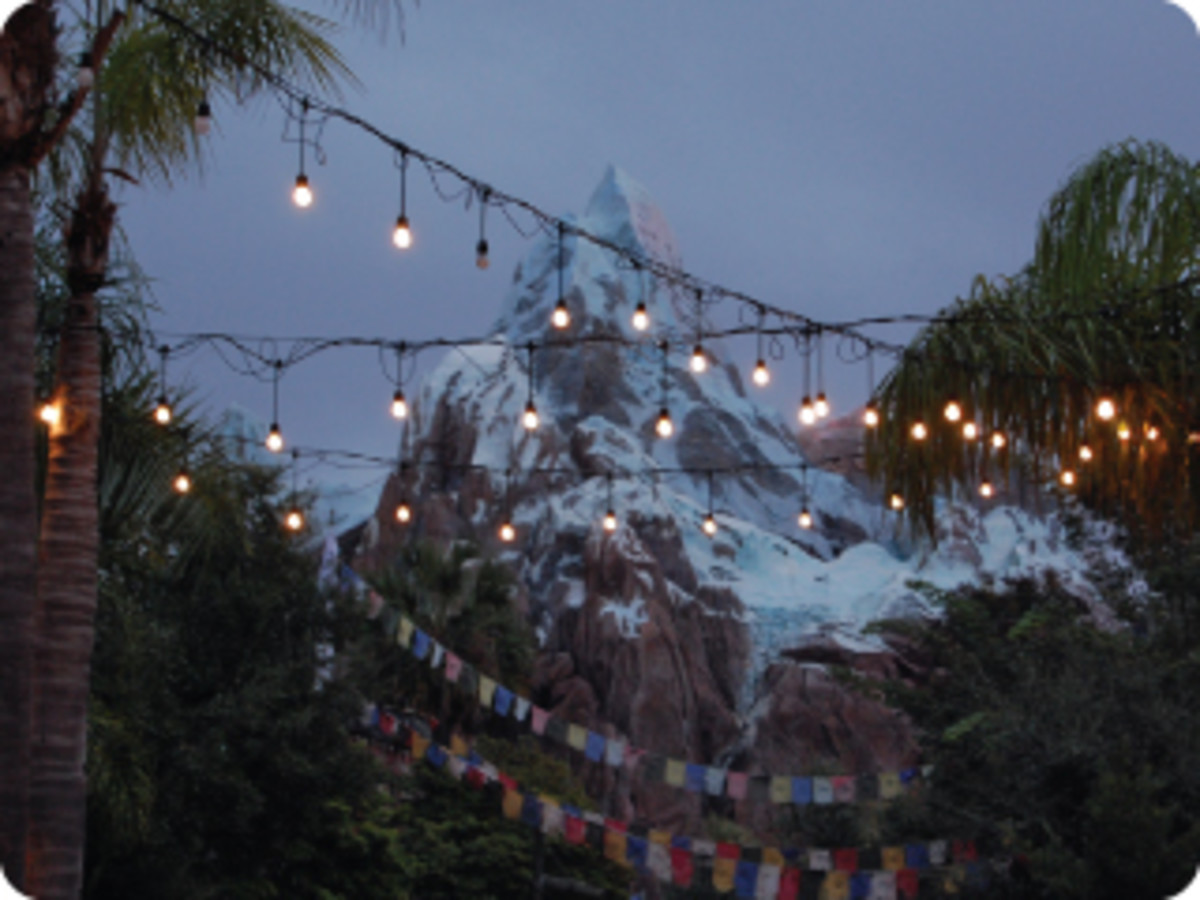 Normally closing before dusk, a night visit (usually during extra Magic hours) gives a new perspective to not just Expedition Everest, but the whole park.