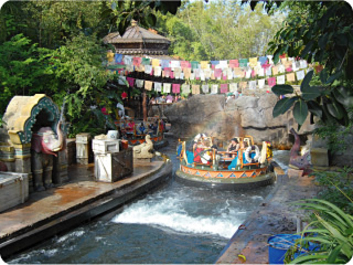 12-seat round rafts take park guests through the wonderfully themed Kali River Rapids ride in Disney World's Animal Kingdom.
