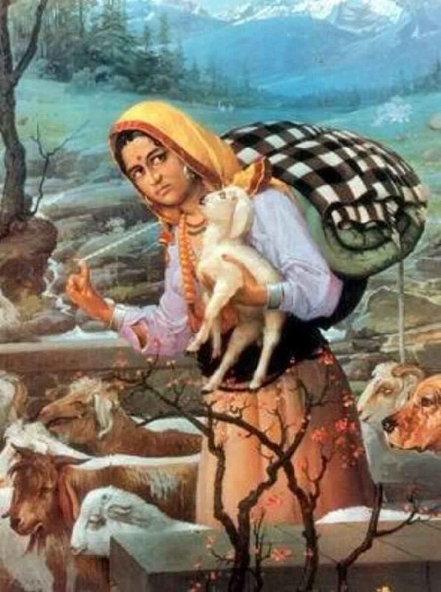 The Gaddan or shepherdess