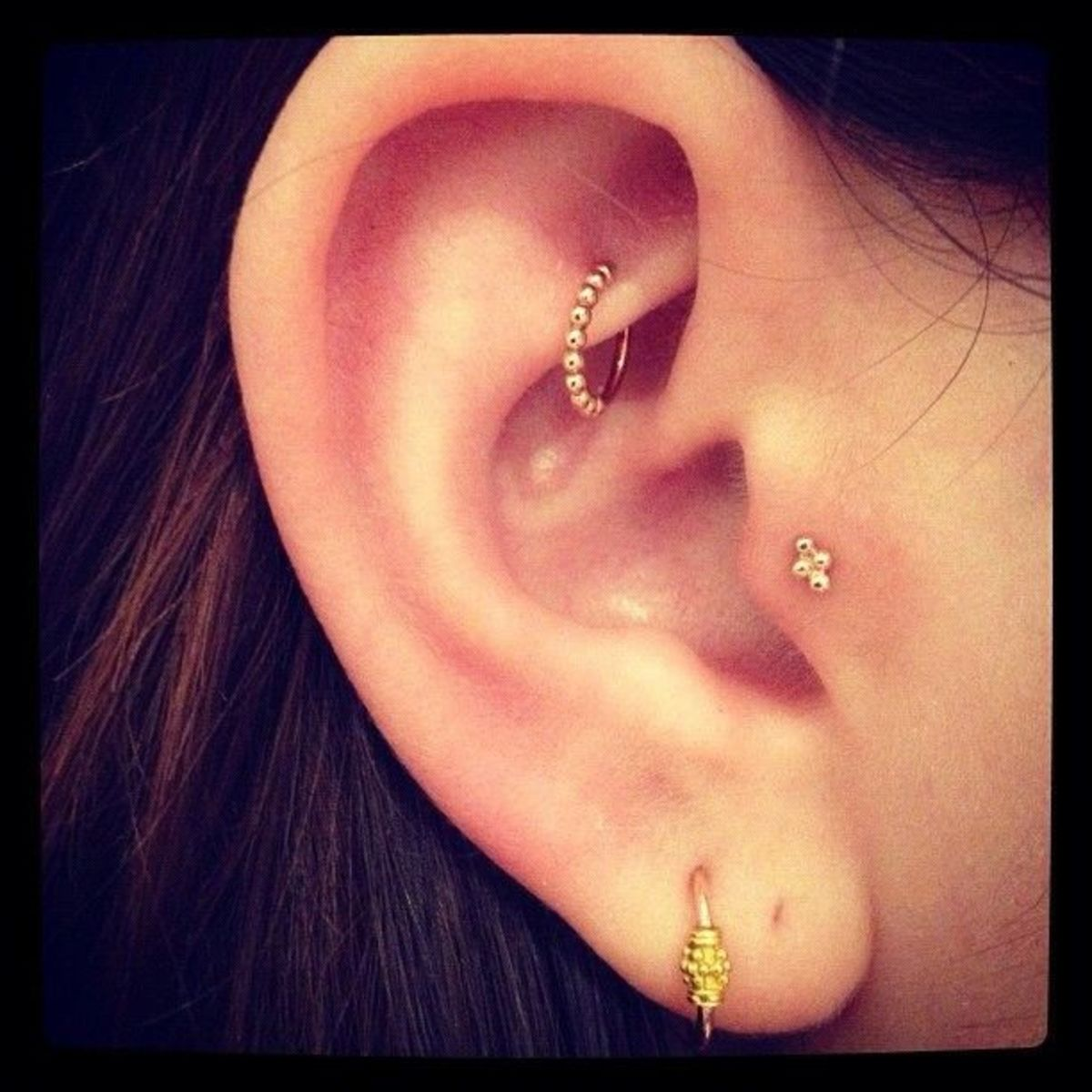 Rook, tragus, and lobe piercings