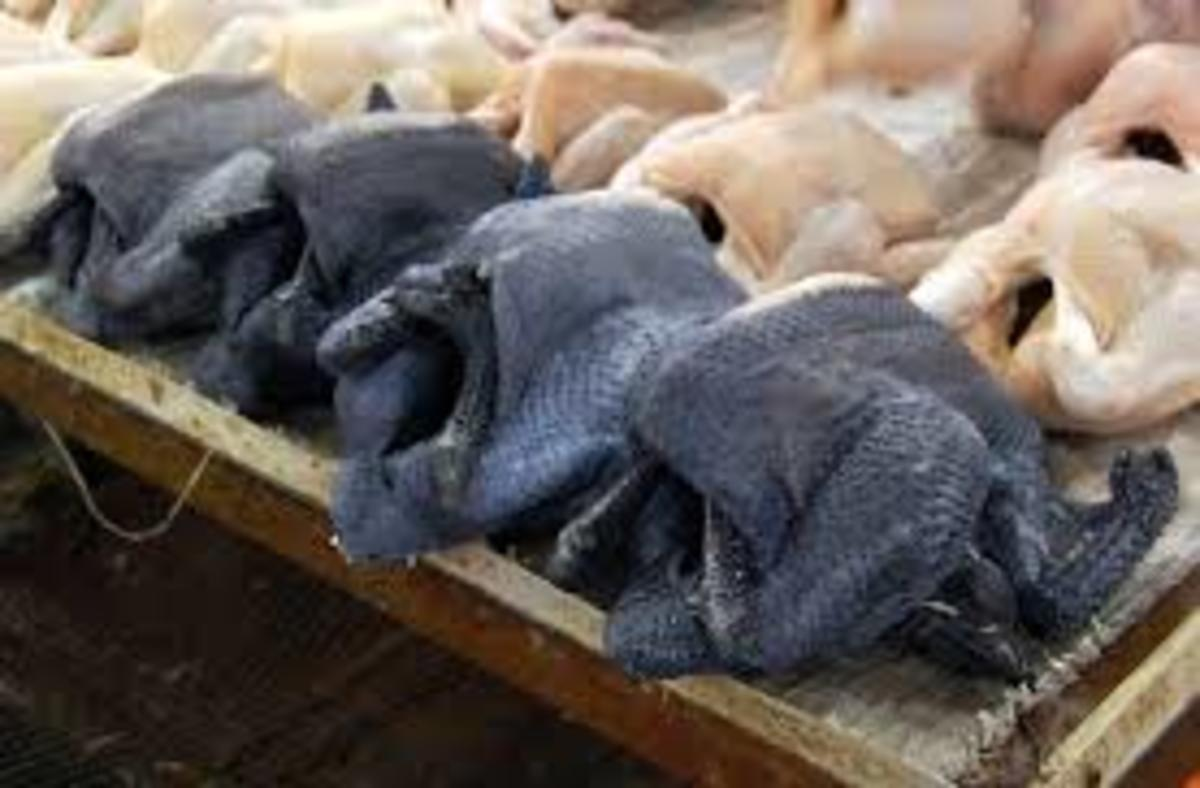 Silkie meat at market with skin, the meat is a shiny inky blue-black.
