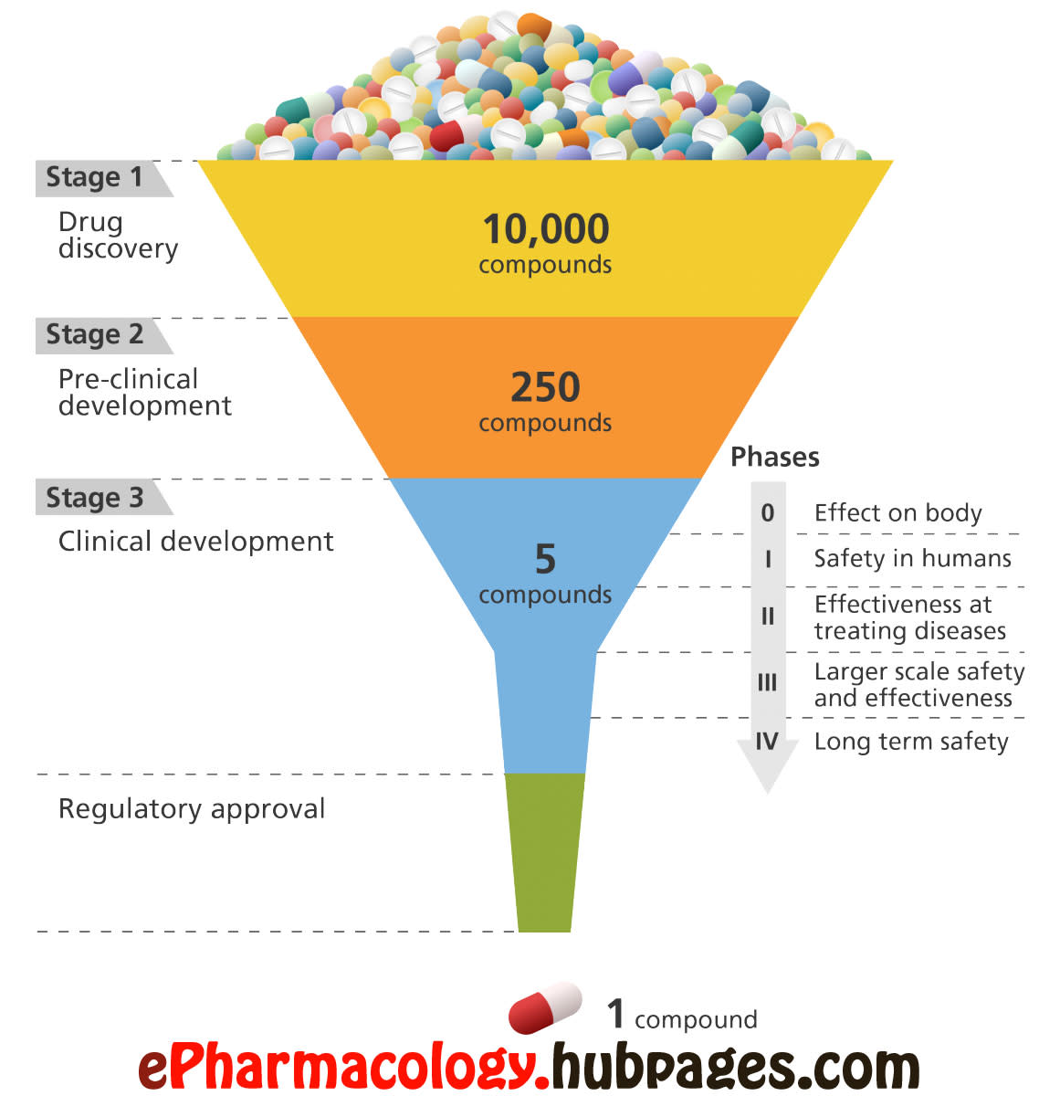 The drug development process in a nut-shell